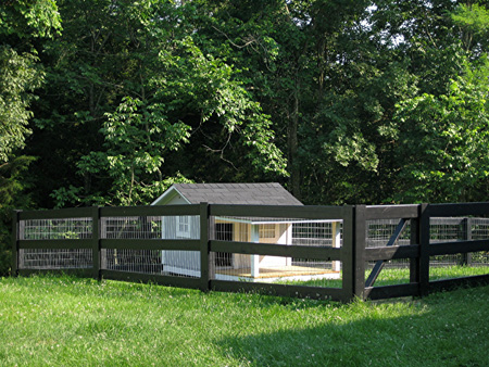 Dog Kennel with Kentucky Fence